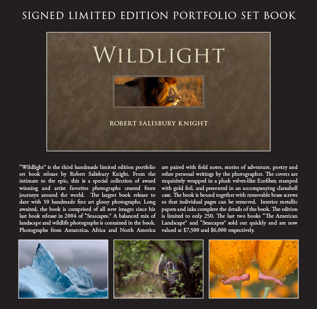Wildlight Handmade Fine Art Photography Book