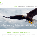 Hire Level Search Group Website