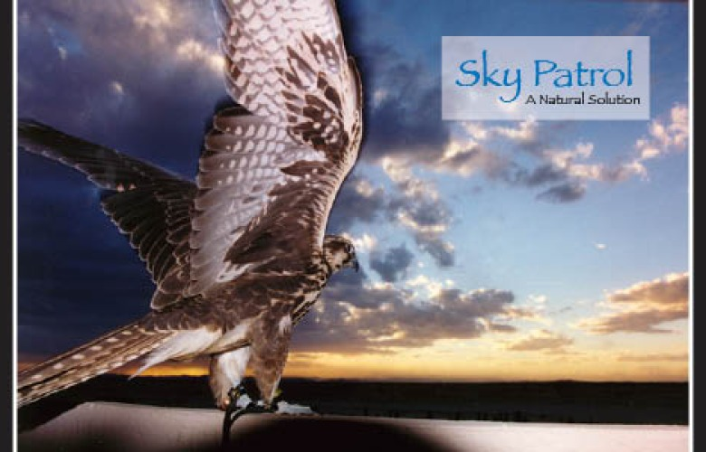 Sky Patrol – Natural Land Abatement Flyer
