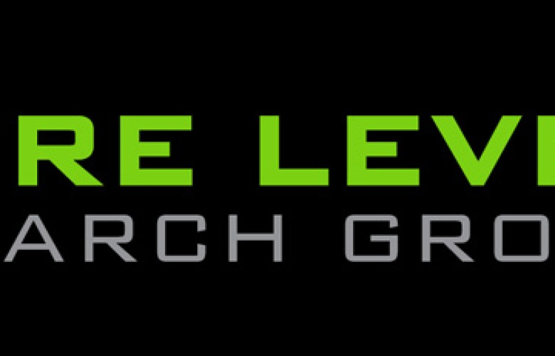 Hire Level Search Group